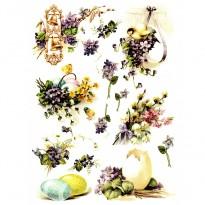 Ριζόχαρτο Λουλούδια και Αυγά