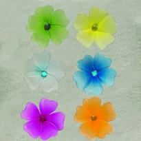 Λουλούδια με μαγνητάκι