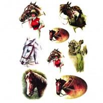Ριζόχαρτο Άλογα